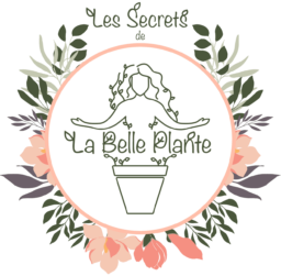La Belle Plante